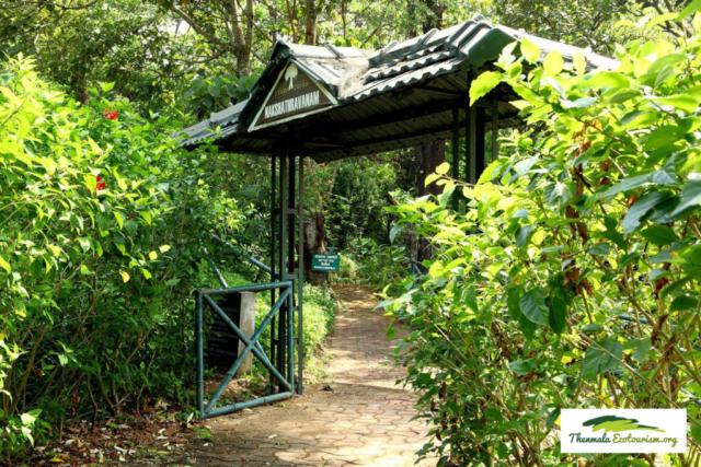 Nakshatravanam Thenmala Ecotourism